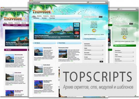 Traveler 4.0 Magazine WordPress Theme [Рабочая]