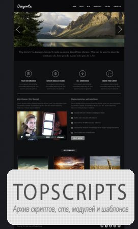 Тема WordPress - Senyorita