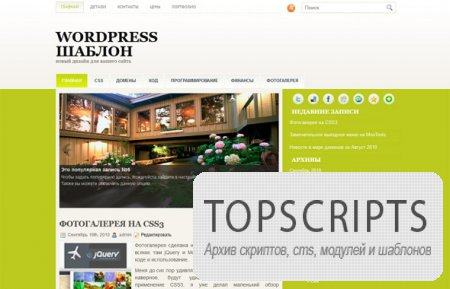Шаблон Vasso для WordPress