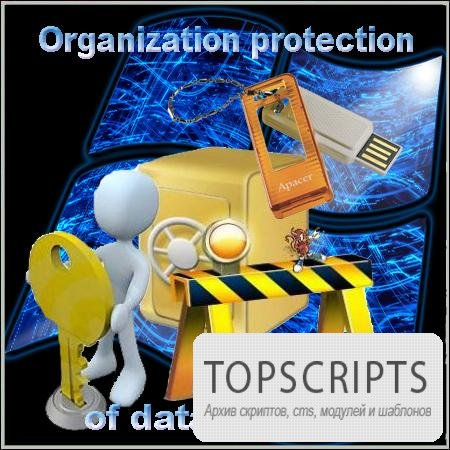 Organization protection of data on Flash