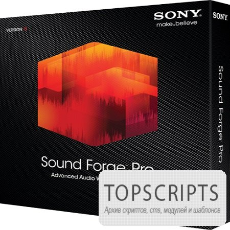 Sony - Sound Forge Pro ( 11.0 Build 272, 2013 )