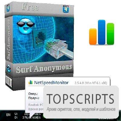 NetSpeedMonitor v 2.5.4.0 (Ru)